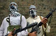 UN committee questions Pakistan on harbouring terrorist groups