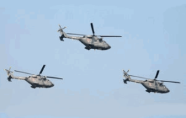 Keep Hindustan Aeronautics Ltd out of Naval Helicopter Plan, Private Companies Tell Govt