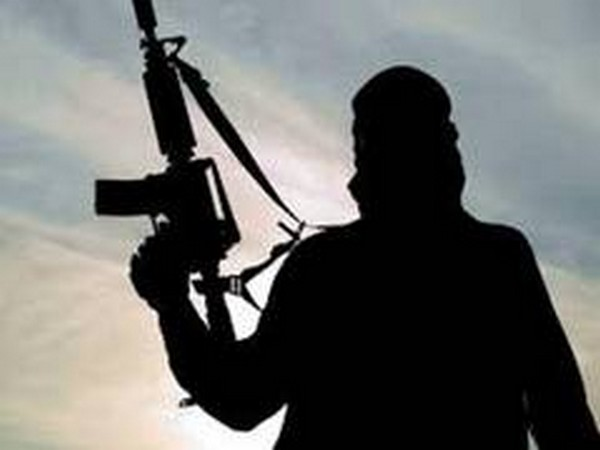 6 DNLA Terrorists Killed By Security Forces In Assam Encounter