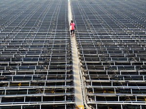 India Extends USD 100 Million Line of Credit to Sri Lanka for Solar Energy Projects