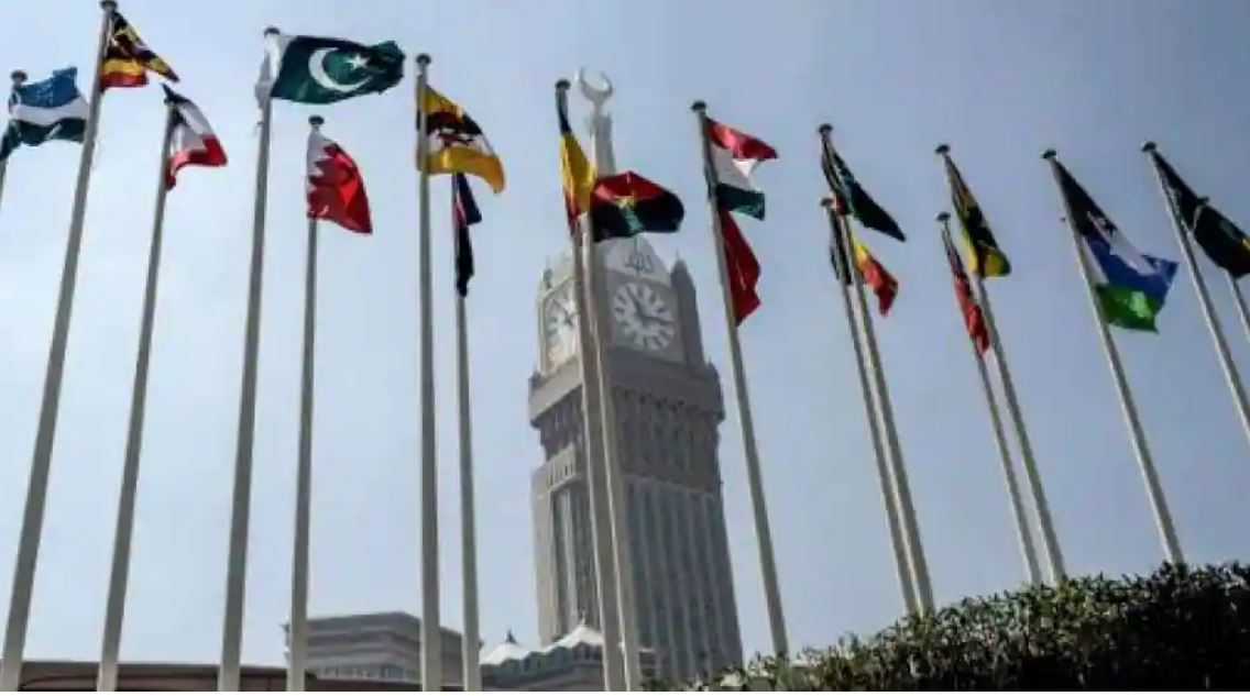 In Rare Development, Indian Envoy In Saudi Arabia, OIC Chief Hold Meeting