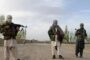 Afghanistan's neighbour Tajikistan holds largest-ever military exercise amid Taliban advance