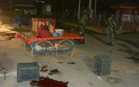 Civilian killings continue as vendor and carpenter shot dead by militants in Srinagar, Pulwama